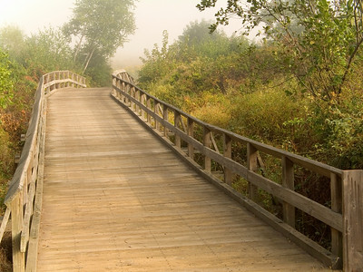 """Wooden Bridge"" A small wooden bridge on a foggy late Summer day in Central, New Jersey."