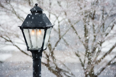 Lampost and Snow