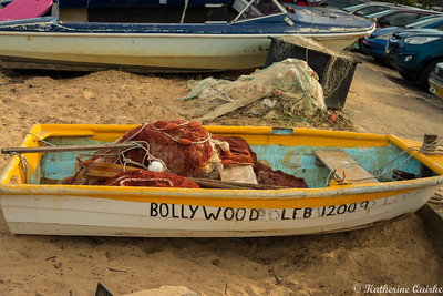 Bollywood Boat
