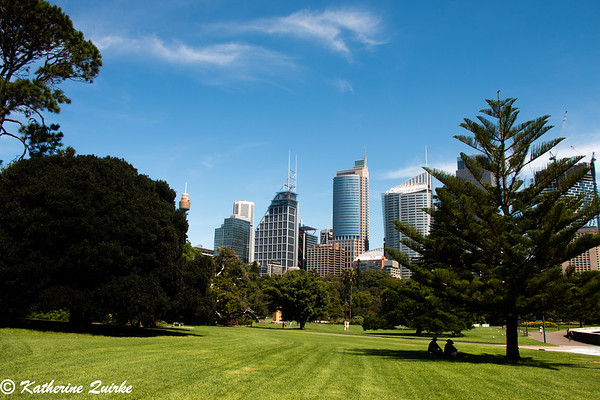 Botanic Gardens City View