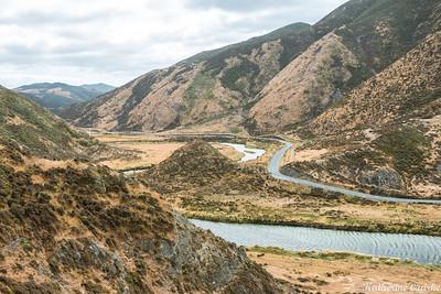 Coast Road, Wellington