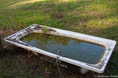 The Outdoor Bath