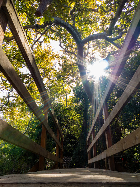 Aliso & Wood Canyons, California, Orange County, United States