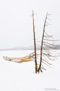 Parajes solitarios de Yellowstone / Lonely places of Yellowstone