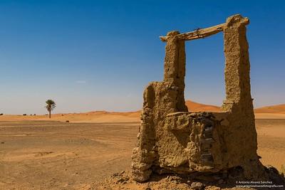 Comienza el desierto / It begins the desert.