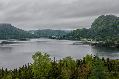 Woody Point, Gros Morne