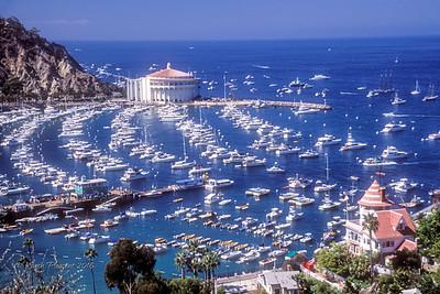 Catalina harbor, California