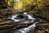 Seneca Falls, Ricketts Glen State Park