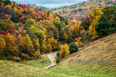 Tennessee baack road