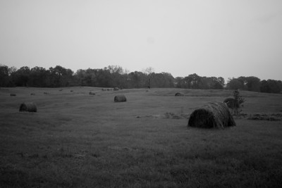 Some photos just scream for Black and White! These Mississippi Delta photos are no exception.