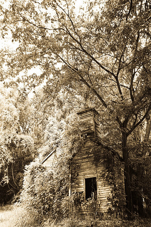 Grand Gulf Church Some photos just scream for Black and White! These Mississippi Delta photos are no exception. Great southern buildings and architecture from our past and present. Some old churches and other items found inside the church that represent our southern faith.