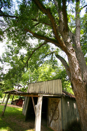 Old Wagon Shack Great southern buildings and architecture from our past and present.