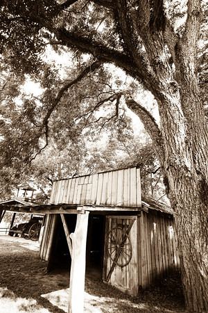 Civil War Shack Some photos just scream for Black and White! These Mississippi Delta photos are no exception. Great southern buildings and architecture from our past and present.