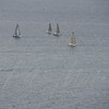 sailboat-race-5919