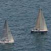 sailboat-race-5886