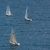 sailboat-race-5925