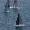 sailboat-race-5890