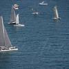 sailboat-race-5906