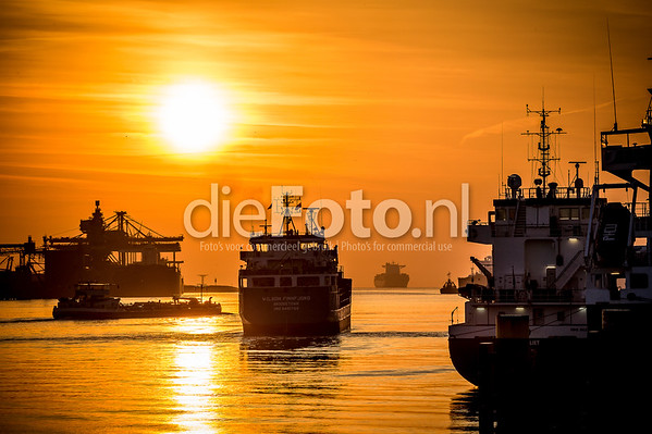 Ships in the port of Rotterdam at nightfall
