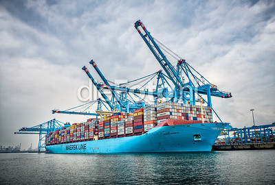 Maersk Containership at APM Terminal