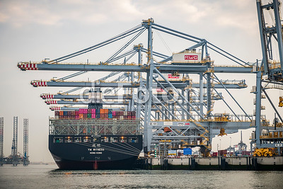 Containership at Terminal in Port opf Rotterdam