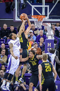 Oregon Ducks vs the Washington Huskies February 13, 2013.  Matthew Lamb