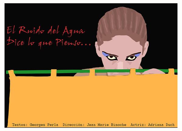 """Cartel de la obra """"El Ruido del Agua dice lo que Pienso""""."""