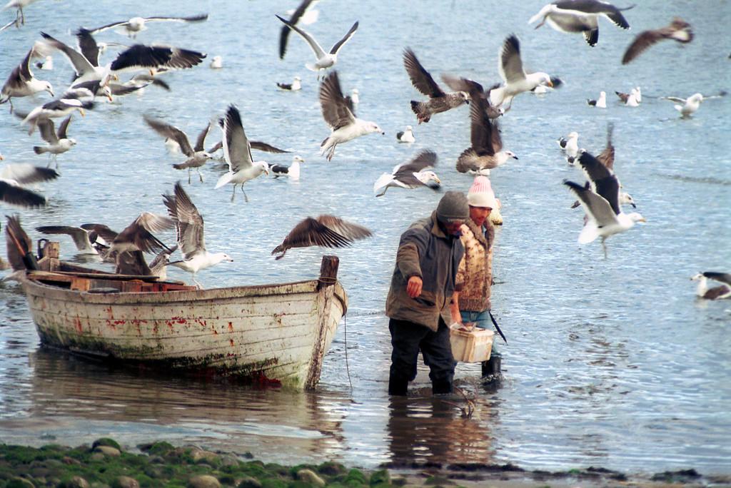 Pescadores de Piedra Azul