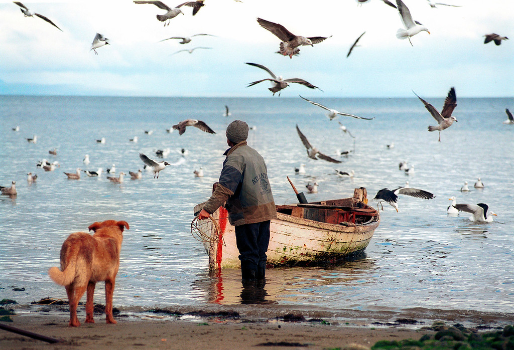 Fin de la jornada, pescador de Piedra Azul. Carretera Austral. Chile.