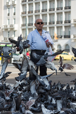 More Pigeons, Athens, Greece, 2012