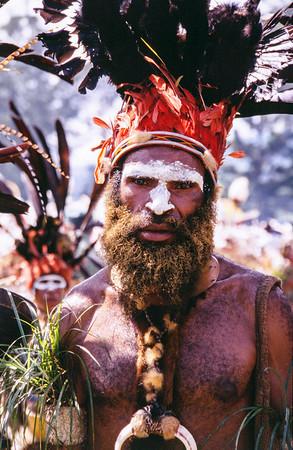 Astrapia Man, Hagen Show, Papua New Guinea, 2003