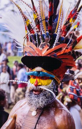Birds of Paradise, Hagen Show, Papua New Guinea, 2003