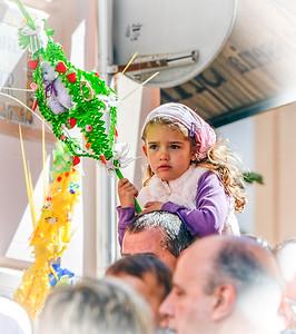 Palm Sunday Celebrant