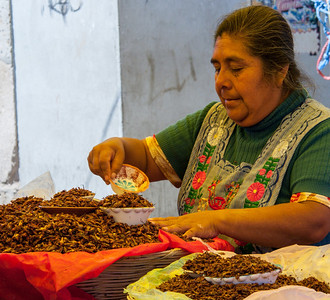 Chapulines, Sunday Market, Tlacolula, Mexico, 2005
