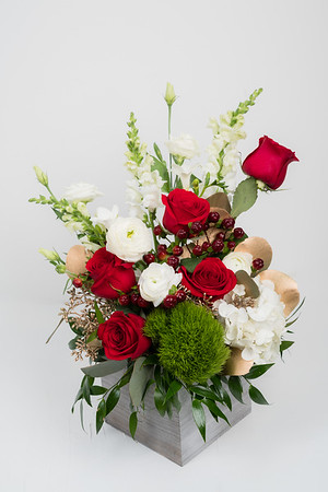 Roses (9)