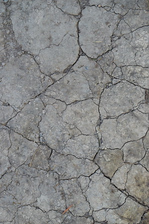 Cement Textures Ilze Lucero Photo Free Art Friday  (3)