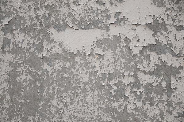 Cement Textures Ilze Lucero Photo Free Art Friday  (10)Ilze