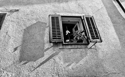 Motovun, Croatia, May 2011.