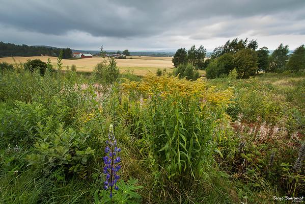 Eidsvoll, Norway