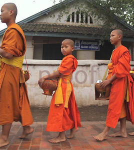 Laos (Luang Prabang): Ancient royal capital, stunning... : Portrait
