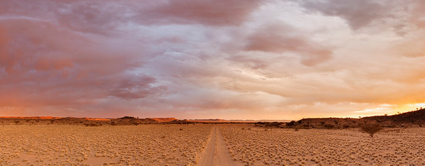 The dirt road leading into the Mesosaurus Fossil Site and Quiver Tree Forest, Namibia. Full colour horizontal landscape image.