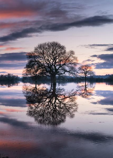 Flood 2016 - River Severn