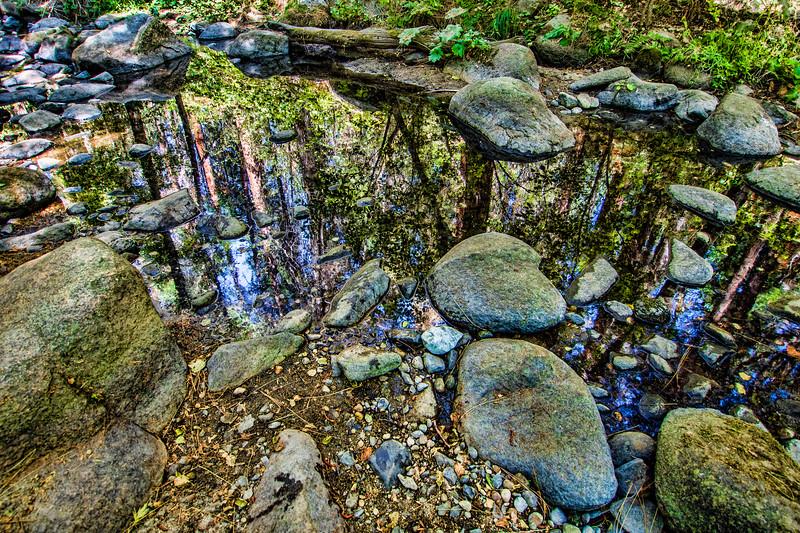 Lewis Creek, near Yosemite NP, CA (MRP-160)