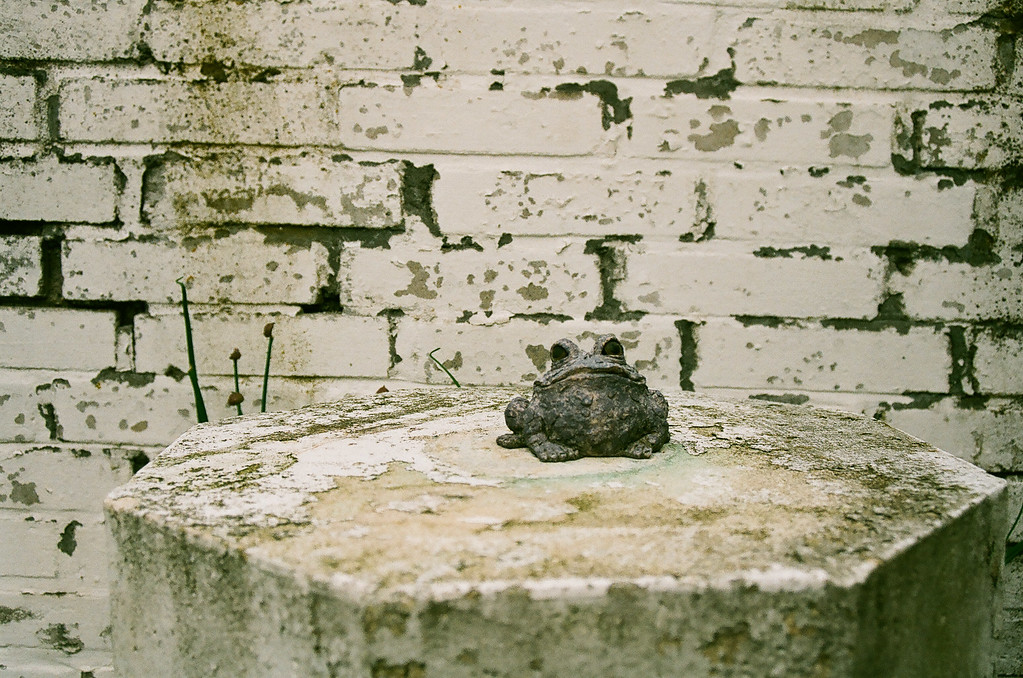 Stone frog, on stone pedestal by stone wall. (Fuji Superia 200 film)