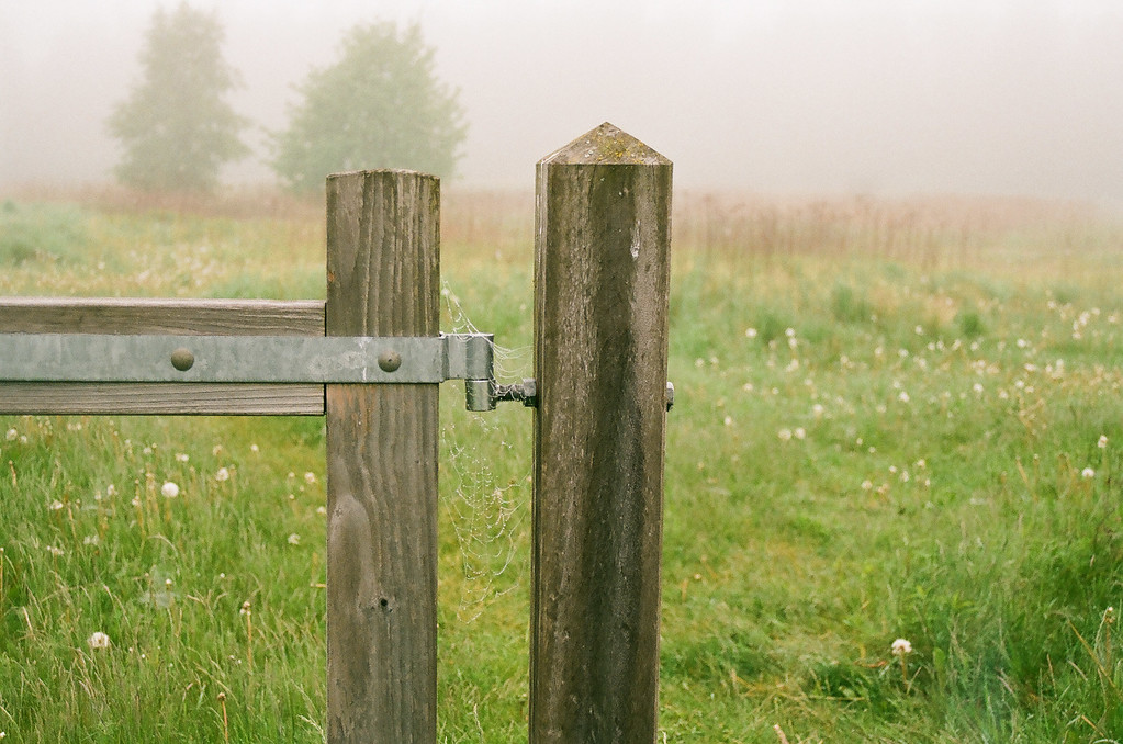 Fence post at Fremtidsvej, Hørsholm. (Fuji Superia 200 film)