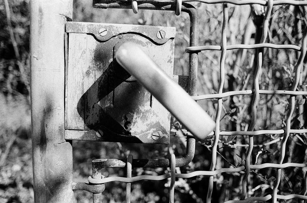 The Gate (Tri-X 400 film)