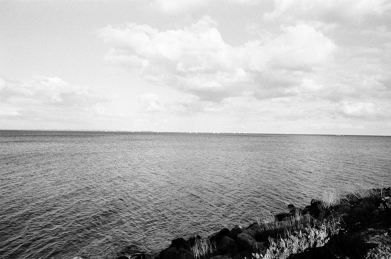 Oeresund at Rungsted (Tri-X 400 film)