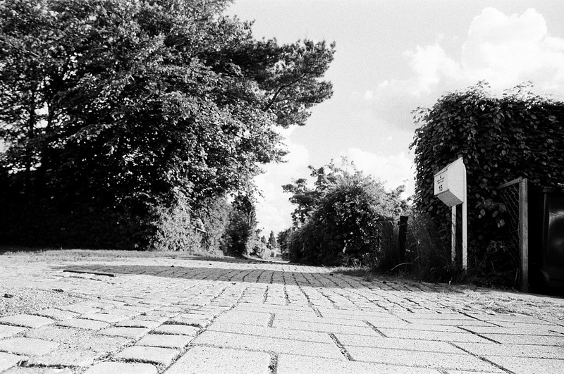 Neighbourhood sidewalk (Tri-X 400 film)