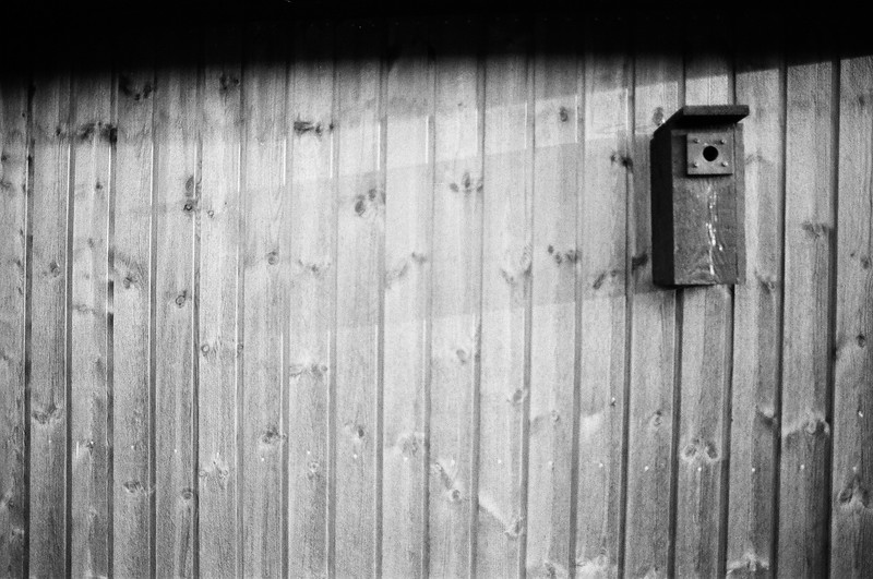 Bird House and shadow (Tri-X 400 film)