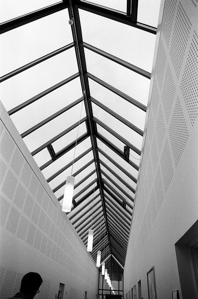 Skylight (Tri-X 400 film)